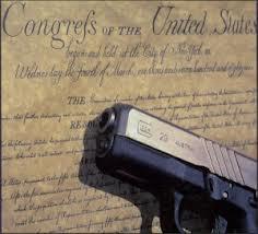 constitution-pistol