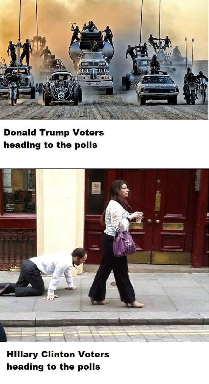 trump-voters-go-to-pools
