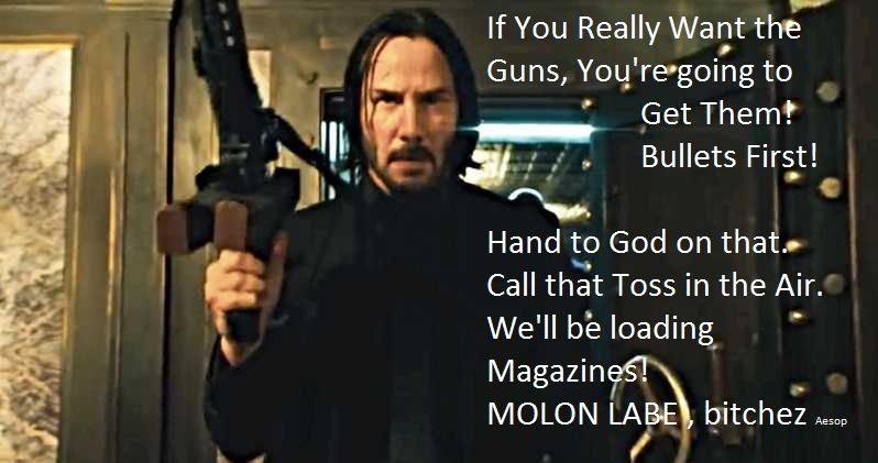 Violate Your Oath and Turn on American Citizens at Your Legal Peril, Gun-Grabbers